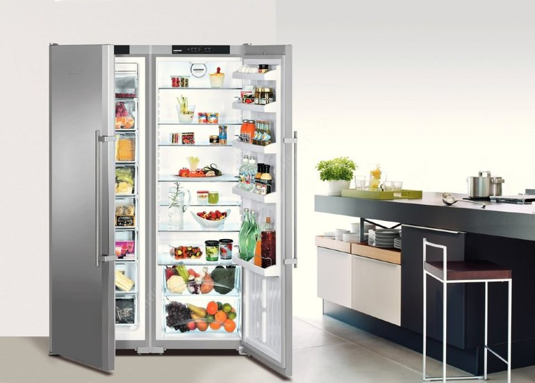 Kuris šaldytuvas su dideliu šaldikliu yra geriausias
